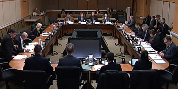 Screenshot of parliamentary standing committee