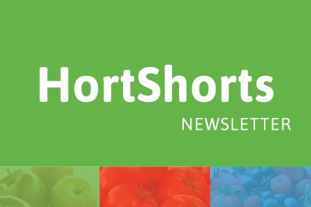 HortShorts logo