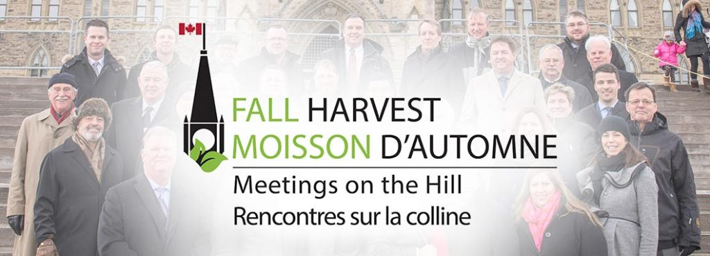 Fall harvest logo