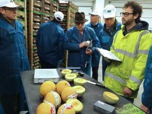 Inspection des aliments dans l'installation de contrôle de la qualité de Hillfresh International, située à Rotterdam, aux Pays-Bas. Photo : R. Lee