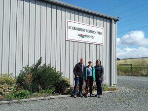 Rebecca at the BC Cranberry Research Farm
