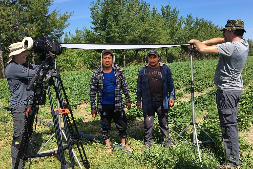 Workers at quinn farm interview